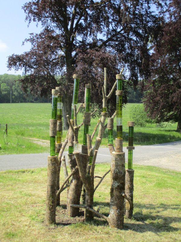 Sentier d'art - Le petit bois - Bois et verre